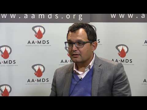 Immune Based Therapies for MDS and AML