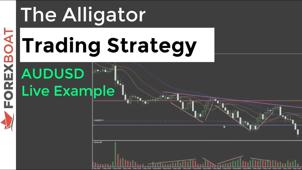 Форекс система аллигатор биткоин прогноз на лето 2019