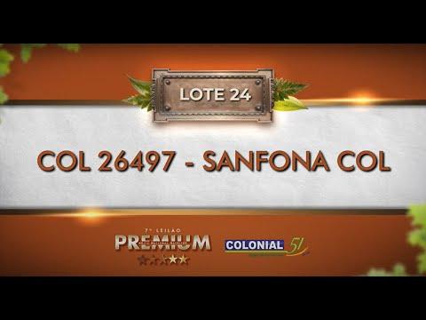 LOTE 24   COL 26497