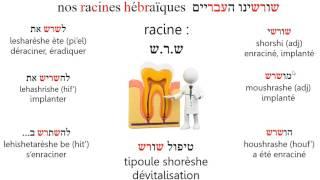 Racine shrsh