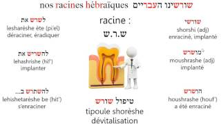 Video Racine shrsh
