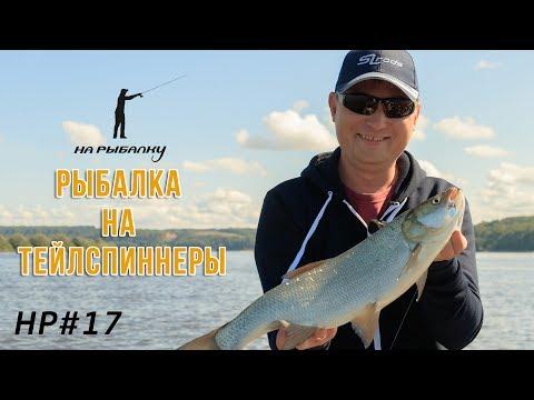Рыбалка на тейлспиннеры. #НР17