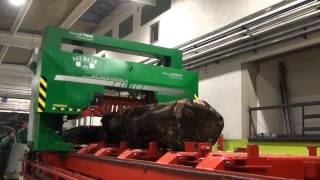 Mebor's Biggest  Band Saw For Large Logs Htz 1400 Sp Extreme 19 (testing Video)