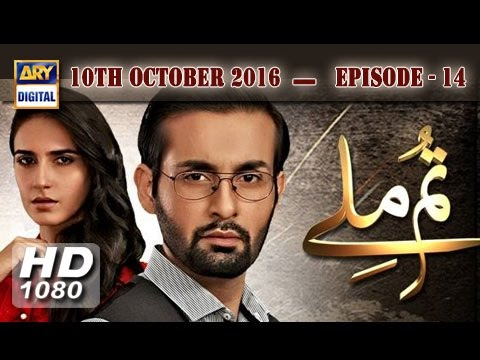 Tum Milay Ep 14 - 10th October 2016 - ARY Digital Drama