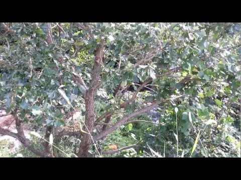 화제전원마을[부산울산창원김해양산전원주�
