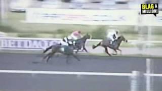 Blag a Million! HORSE TRADING