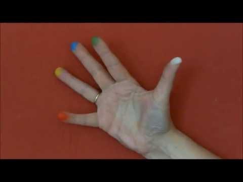 Ein Fingerspiel über Farben