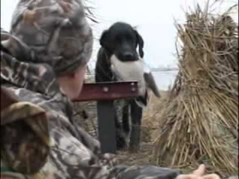 CICC Outdoor Adventures Waterfowl / Pheasant Hunting