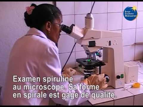 Spiruline Akamasoa Madagascar ECD 2016