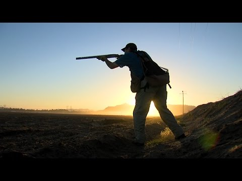 Yuma: A Dove Hunter's Paradise