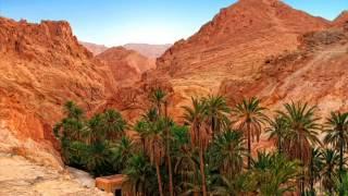 Real Golf Travel agence de voyage en tunisie hammamet