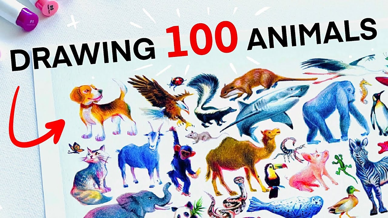 Drawing 100 Animals in 4 DAYS + Ohuhu Markers First Impressions!