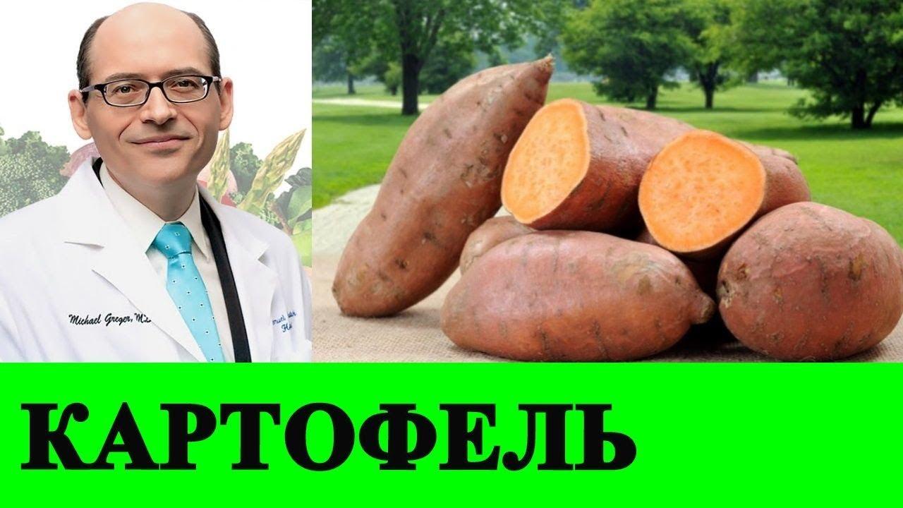 Сладкий Картофель и Рак - Доктор Майкл Грегер