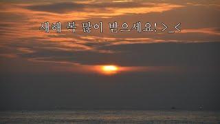 새해 일출 & 강릉 바다 보면서 안녕히 주무세요…