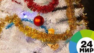 Жители Благовещенска встретили Новый год на набережной Амура - МИР 24
