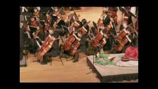 Chitravina N Ravikiran - Amazing Melharmony