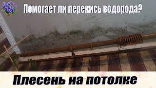 видео Как избавиться от плесень на потолке