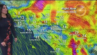 CBSLA Afternoon Weather Brief (January 21)