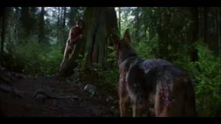 Bad Moon (1996) movie Tribute