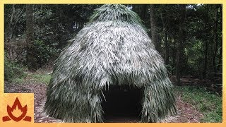 Building A Primitive Thatched Dome Hut From Scratch