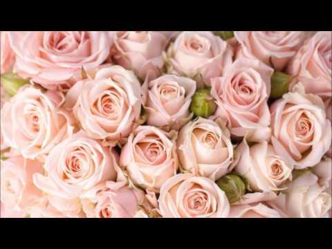Стильные цветы на фотообоях в вашем интерьере