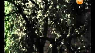 Детективные истории - Колдуны-разлучники