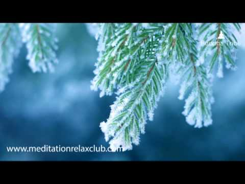 Christmas Nature Sounds Music: New Age Relaxing Songs for ...