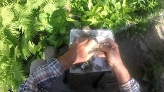 видео Пчелиная маточная клеточка - своими руками