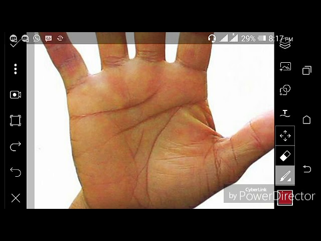 100%  ???? ?????? ????? ?? ??? || Government job indications in palmistry