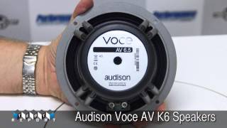 #audison #voce #bit #ten #processor #skinz #caraudio