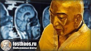 У тысячелетней мумии буддийского монаха оказался вполне жизнеспособный мозг и внутренние органы
