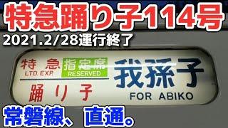 【185系】臨時特急踊り子114号我孫子行きに乗車 / 東京駅⇒我孫子駅
