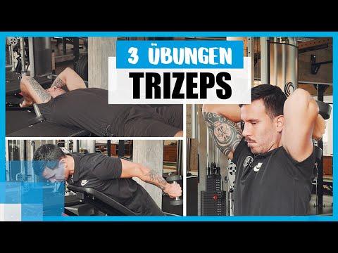 Krafttraining-Tutorial: Drei Trizeps-Übungen mit Kurzhanteln für straffe Arme 💪 thumbnail