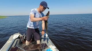 Первый выезд на рыбалку летом часть 2