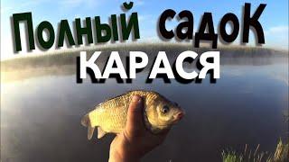 НАЛОВИЛ 20кг КАРАСЯ РЕКА АКСАЙ Рыбалка в Ростовской области