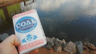Добавление соли в пруд!лечение рыб солью!повышение иммунитета у рыб весной!пруд на даче!