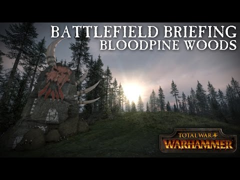 Total War: WARHAMMER - Battlefield Briefing - Bloodpine Woods