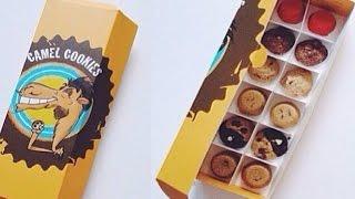 Trying Camel Cookies Abu Dhabi (Vlog #103)
