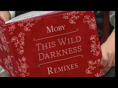 Moby - This Wild Darkness (CYA Remix)