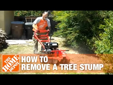 How To Remove a Tree Stump - The Home Depot