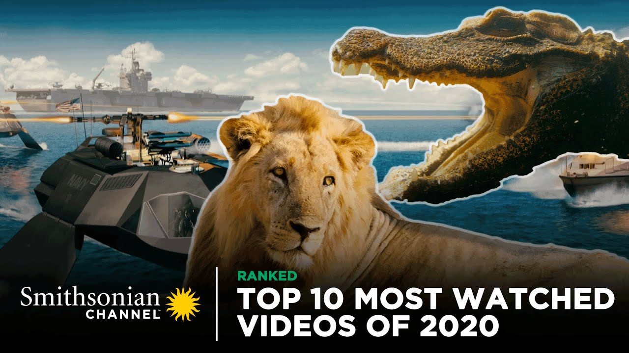 Download Top 10 Most Watched Videos Of 2020 👀 Smithsonian Channel