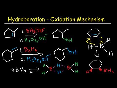 Hydroboration Oxidation Mechanism of Alkenes -  BH3, THF, H2O2, OH- Organic Chemistry
