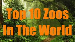 Top 10 Zoos In The World!