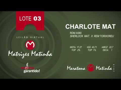 LOTE 03 Matrizes Matinha 2019