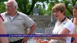Yvelines | Présentation d'un cimetière végétalisé au Mesnil-Saint-Denis