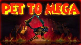 """Wizard101: Pet To Mega """"Detolli's Dragon"""" Episode #57"""