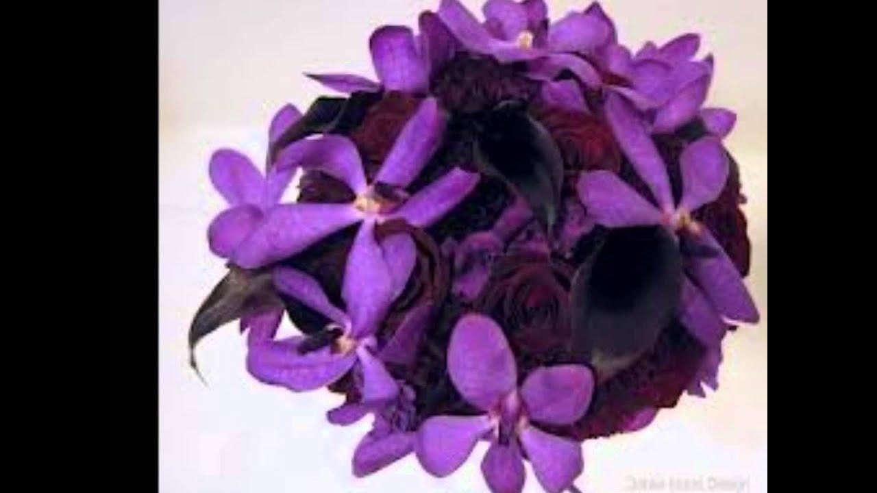 complete guide to purple wedding flowers purple flower - HD1400×1214