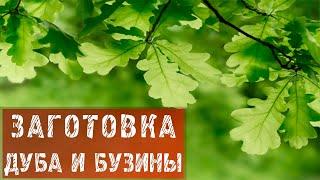 """""""уДачное настроение"""" № 47. 2012."""