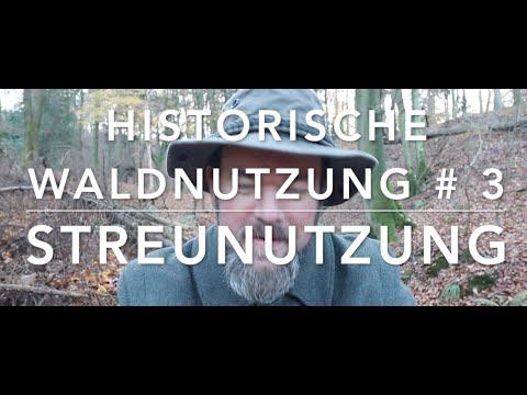 Streunutzung - Hist. Waldnutzung  #3