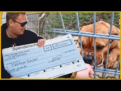 10.000€ für das TIERHEIM Rastatt!